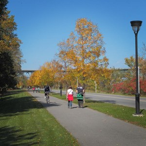 Activity Montreal: walking at parc Jean-Drapeau