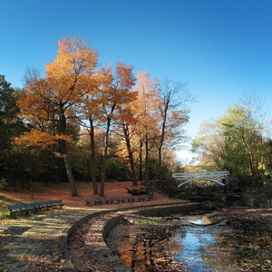 What to do in Montréal in Autumn: walking at parc Jean-Drapeau