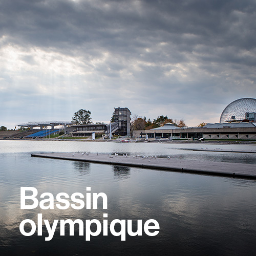 Bassin olympique
